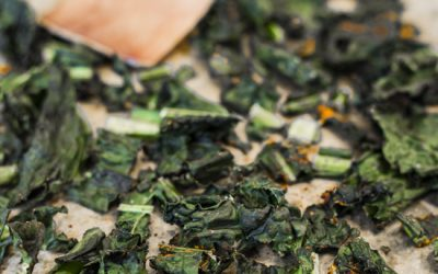 WINTER SPICED KALE CRISPS